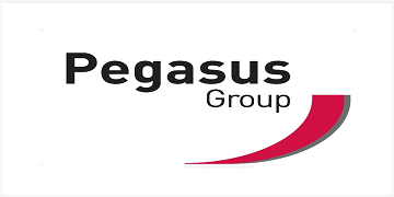 Pegasus Group Limited logo